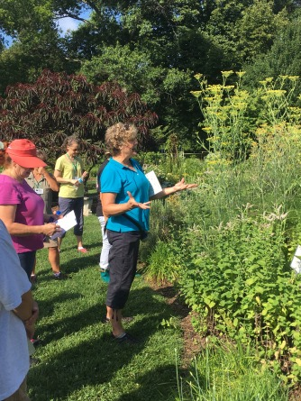 Nancy Berlin shows off our beautiful fennel