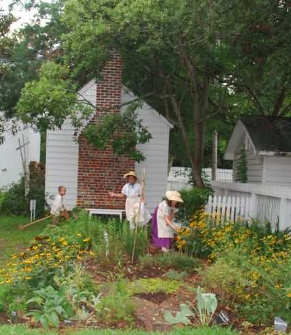 Colonial Williamsburg herbal garden