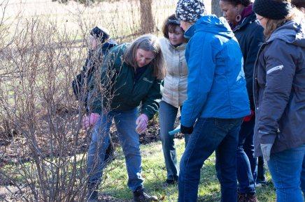 justkim-2019-mgpw-teachinggarden-pruningclass-10