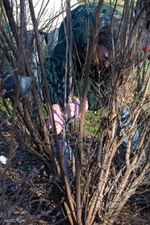 justkim-2019-mgpw-teachinggarden-pruningclass-17