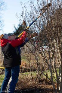 justkim-2019-mgpw-teachinggarden-pruningclass-8
